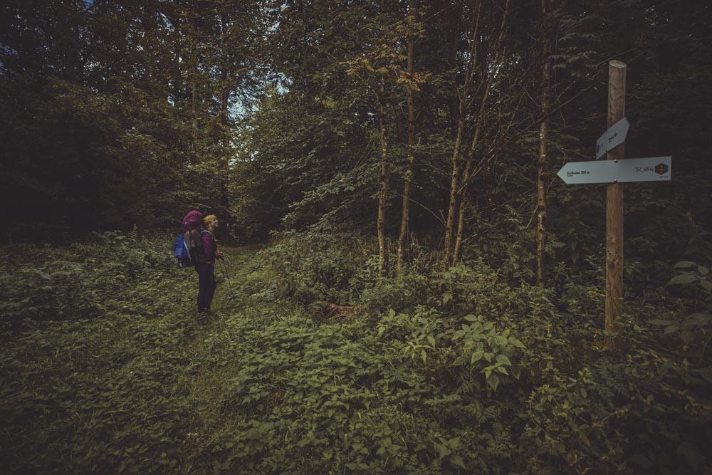 Frankenwald Trekkingtour
